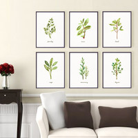 Kitchen art Herb print Set of 6, 8x10 watercolor art, Botanical print set, Kitchen print set, Green wall decor, Home decor housewares