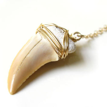 Large Shark Tooth Necklace wrapped in Gold