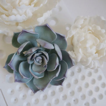 Sugar succulent, GumPaste Succulent, Fondant Succulent, Gum Paste Succulent for Edible Flower Wedding/Birthday Succulent Cake Topper,