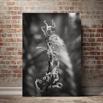 Fern Detail, Black and White Art Photography, Botanical Art Print, Nature Photography, Tropical Print, Florida Swamp Hammock, Jungle Decor