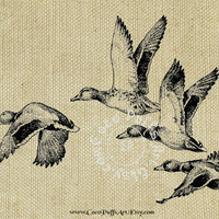 FLYING DUCKS cp134 - 8.5x11 inch Digital Collage Sheet Art for Transfers, Card Makers, Arts & Crafts