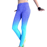 Colorful Sport Running Leggings