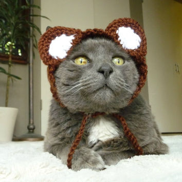 Cat Costume Hat Dog Costume Hat Bear Cat Hat Bear Dog Hat Bear Costume for Pets Pet Costume Animal Hat Pet Clothes Pet Clothing Pet Outfit