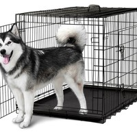 Pet Kennel Cat Dog Folding Steel Crate Playpen Wire Metal Cage 48""
