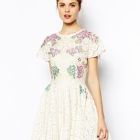 ASOS Skater Dress In Bright Embroidery