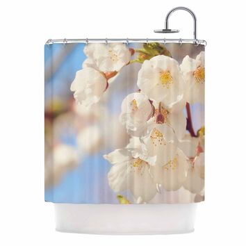 """AFE Images """"Cherry Blossoms"""" Multicolor Blue Photography Shower Curtain"""