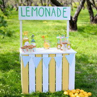 6720 Lemonade Stand In The Field Printed Backdrop