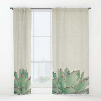 Echeveria Window Curtains by Cassia Beck