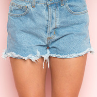 Ray Denim Shorts - Bottoms - Clothing