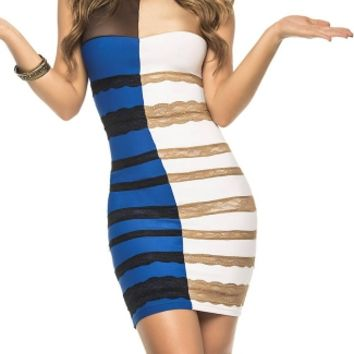 What Is The Color Dress Costume, The Dress Halloween Costume, Controversial Dress Costume