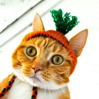 Carrot Costume  Cat by bitchknits on Etsy