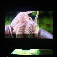 1.4x3m High Brightness Projector screen reflective fabric cloth projection screens for Epson Sony Benq XGIMI JMGO Projector
