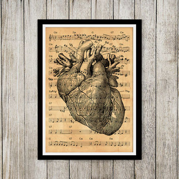 Heart poster Old paper print Anatomy print Medical decor NP124