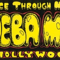 Peace Through Music (Bumper Sticker) - Amoeba Music