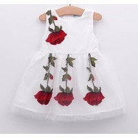 Baby Girl Dress Birthday Dress lace infant Roses Infant Bow-knot Princess Wedding Dress Baby Girls Clothes