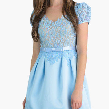 Light Blue Floral Lace Puff Sleeve Pleated Mini Dress
