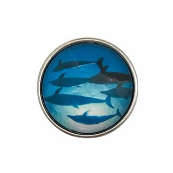 Shark Pod 20mm Snap-Snap Charm Jewelry
