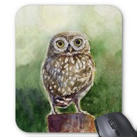 Little owl watercolor painting mousepads