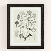 Caitlin Foster Hank's Field Guide Art Print | Urban Outfitters
