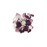Rose Petals | Wedding Petals | Confetti.co.uk
