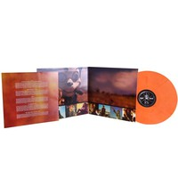 Danger Days: The True Lives of The Fabulous Killjoys Limited Edition Colored Vinyl - Music