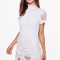 Petite Dina Crochet Lace High Neck Bodycon Dress | Boohoo
