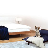Master Suite Luxury Pet Bed with Navy Blue Bedding