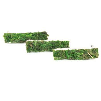 Moss Pin, Moss Brooch, Terrarium Jewelry, Terrarium, Moss Jewelry, Set of 3, Eco Friendly, Living Plant Jewelry