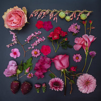 PINK- the garden collection 10x10 square print