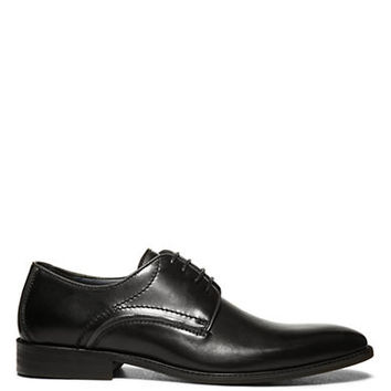 Steve Madden Lingo Leather Oxfords