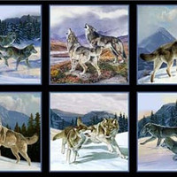 Wild Run-Wolf Block Panel, Black, Elizabeth Studio