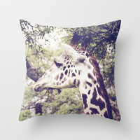 Aloof Throw Pillow by Beth Thompson