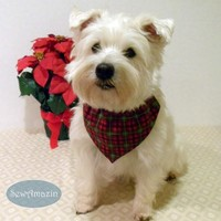 Red and Green Plaid Pet Scrunchie Bandana or Collar Slipcover