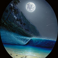 Wyland Store - A MOONLIGHT PARADISE
