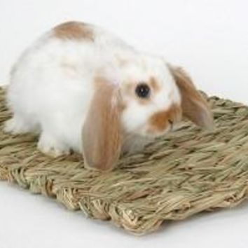 Pet Rabbit Woven Grass Mat