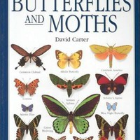 Smithsonian Handbooks: Butterflies and Moths