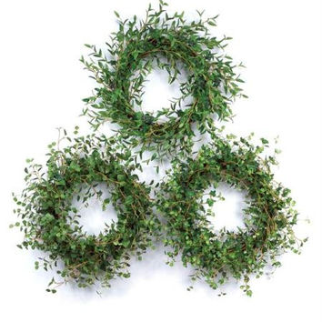 3 Greenery Wreaths - Ivy, Bamboo And Boxwood Foliage