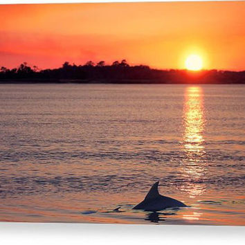 Dolphin at Sunset Photograph - fine art photography, Orange Blue Yellow Wall Art, Wildlife Nature Print, South Carolina Seabrook Island