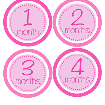 Baby Month Stickers Baby Girl Monthly Onesuit Stickers Hot Pink Monthly Onesuit Stickers Month Stickers Baby Shower Gift Photo Prop -Abby