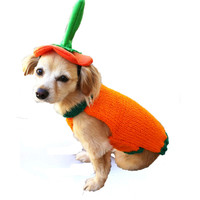 Custom Pumpkin Hat and Sweater Pet Halloween Costume - cat or dog costume