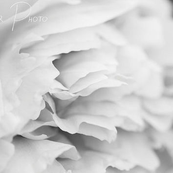 Photo Print, Black and White Chrysanthemum Photo, Floral Decoration, Home Decor, Nature Photo, Macro Photography, Art Photograph, Wall Art