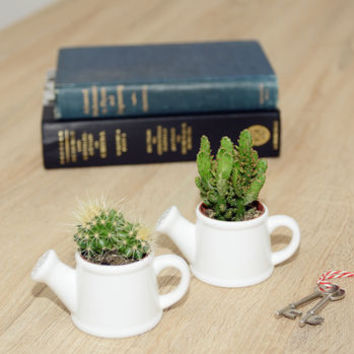 Watering Can Shaped Mini Planter