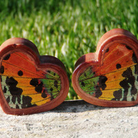 "Real Moth Wing Plugs 1/2""-1""- Sunset Moth - Cherry Wood Double Flared Plugs (choose your own size)"