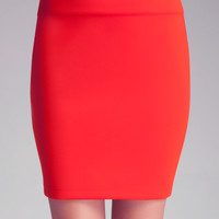 Solid Skirt with Back Zip