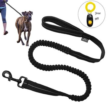 Reflective Stitching Bungee Dog Leash Elastic Dog WalkingTraining Lead with Free Clicker Black