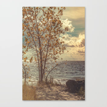 When You Start To Fall Canvas Print by Faded  Photos
