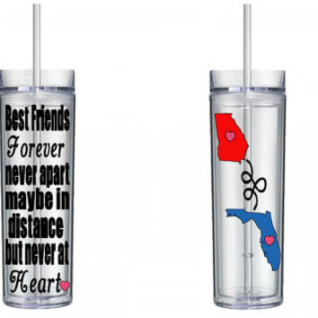 Best Friend 16 oz Skinny Tumbler Cup With Lid and Matching Straw