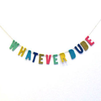 """Whatever Dude"" Felt Party Banner in Multicolor"