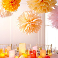 Tissue Paper Pom-Poms How-To - Introduction - MarthaStewart.com