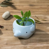 Amazon.com: Cute Elephant Flower Pot